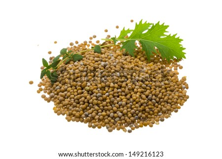 Mustard seeds with herbs isolated - stock photo