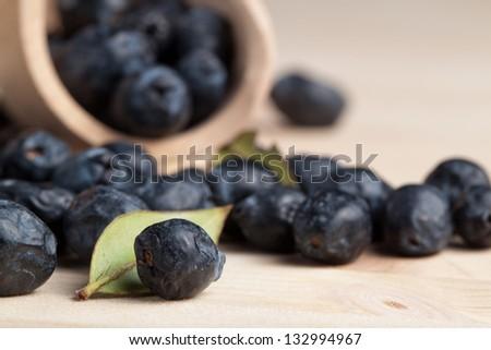 myrtles berries - stock photo