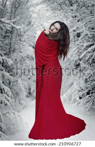 Mysterious fantasy woman in red dress in forest at snow. Book cover - stock photo