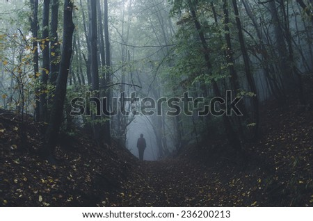 mysterious forest scene with man on dark path - stock photo