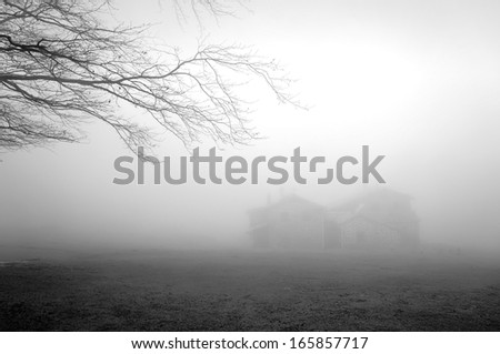 mysterious house in the forest with fog and a tree - stock photo
