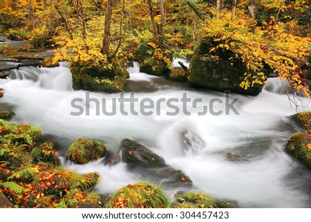 Mysterious Oirase Stream in the autumn forest of a national park in Aomori Japan (Passion and bright light version) - stock photo