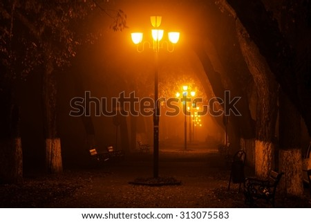Mysterious photo in the park at night - stock photo