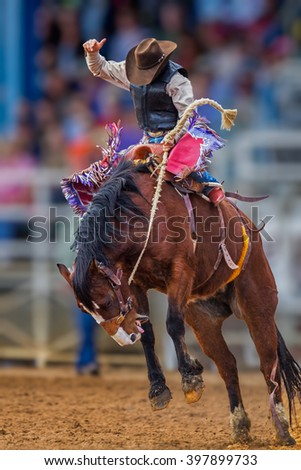 Mystery cowboy bucks on wild mustang in Florida Rodeo - stock photo