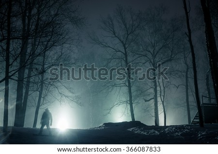 Mystery forrest - stock photo