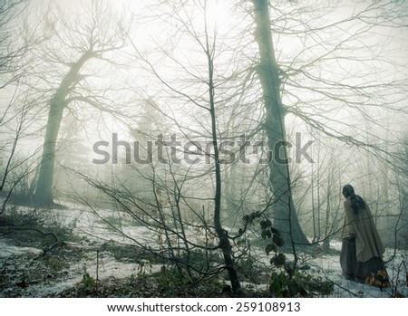 Mystic forest with walking woman - stock photo