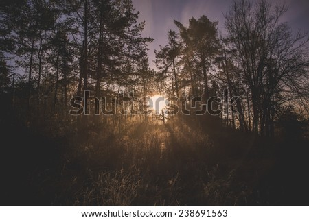 Mystical Sunrise over River in the misty Forest. Mist is over the river covering the forest and sun rays are penetrating through. Scenic and atmospheric sunrise on Sobec in Slovenia. - stock photo