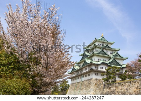 Nagoya Castle in Japan during cherry blossom season in spring. - stock photo