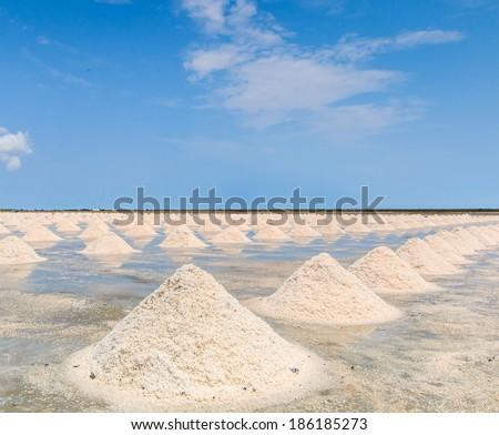 Naklua Mass of salt in salt seaside farm, Petchaburi Thailand - stock photo