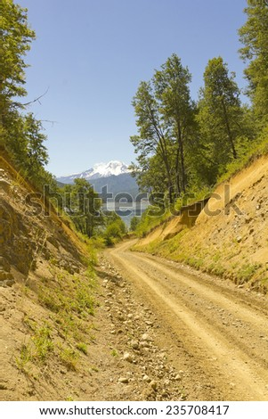 Nalcas National Park, Chile. The route to snowy volcano Lonquimay. - stock photo