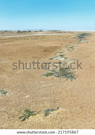 Namib desert - Namibia, South-West Africa - stock photo