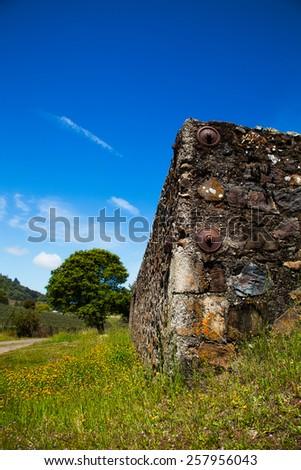 Napa valley. Sonoma.  Stone wall in a vineyard. - stock photo