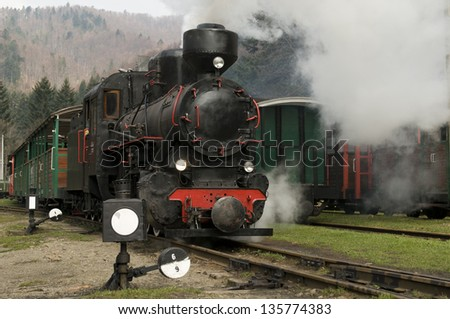 narrow-gauge train - stock photo