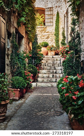 Narrow medieval street with flowers in France - stock photo