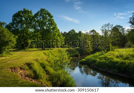 narrow river in summer day - stock photo