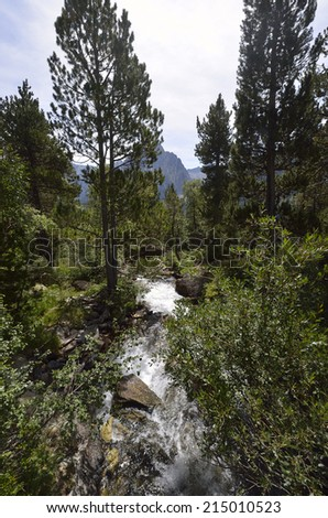 National Park Aiguestortes mountain Stream  Pyrenees Catalonia Spain - stock photo