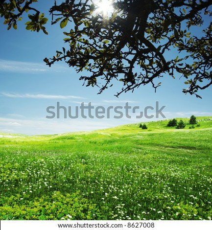 Natural background - stock photo