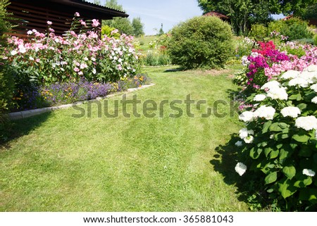 Natural background. Garden lawn with a flower garden on the perimeter - stock photo