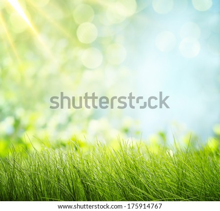 Natural backgrounds - stock photo