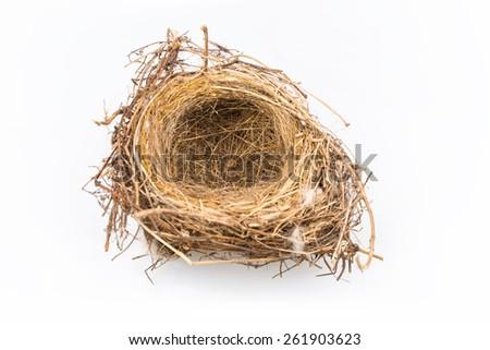 natural bird nest isolated on white background - stock photo