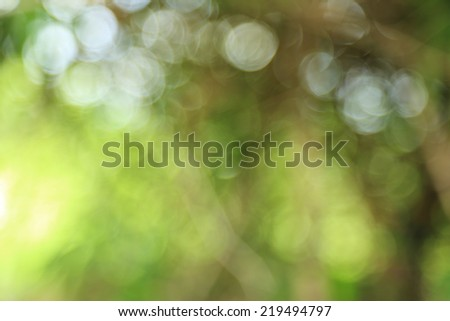 natural blur abstract and background (defocused) - stock photo