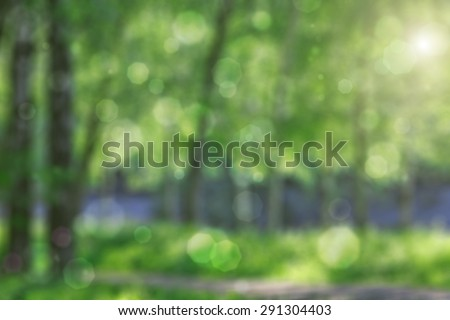 Natural blurred background with sunlight - stock photo
