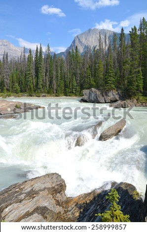 Natural Bridge at Yoho National Park, Canada - stock photo