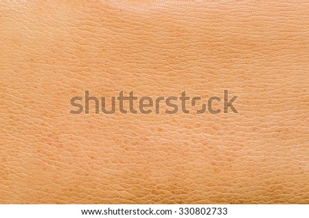 Natural brown leather. Animal skin Stretched. As a background. - stock photo