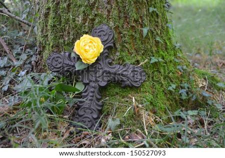 natural burial - stock photo