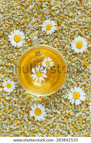 Natural chamomile yellow organic herbal tea in transparent glass cup. Dried camomile flowers background. Healthy alternative medicine beverage. - stock photo
