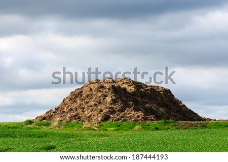 Natural dunghill on a land.  - stock photo