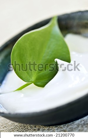 Natural face cream or skincare with green leaf - stock photo