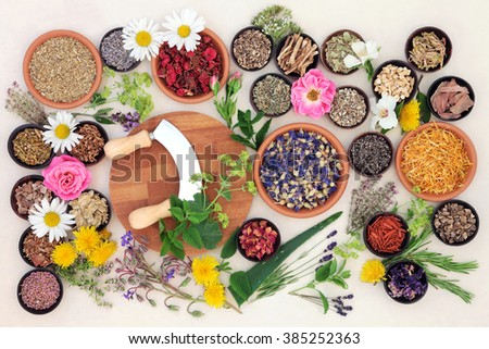 Natural flower and herb selection used in herbal medicine over speckled handmade cream paper background.   - stock photo