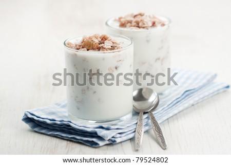 Natural fresh yogurt and muesli in a glass - stock photo