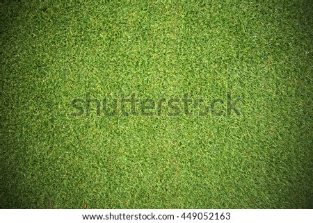 Natural grass texture patterned background in golf course turf from top view number 2 : Abstract background of authentic grassy lawn environmental textured pattern backdrop - stock photo
