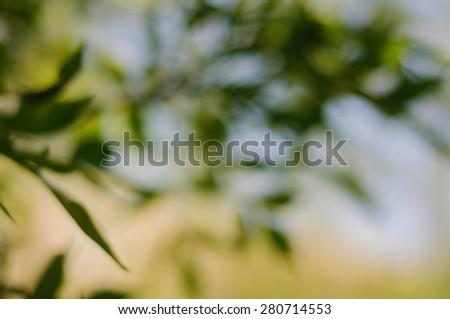 Natural Green Background. Bokeh - stock photo