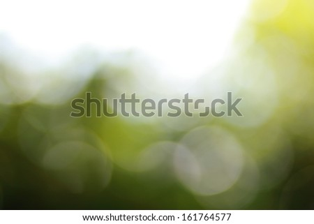 natural green bokeh background - stock photo