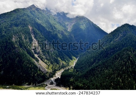 Natural Green Scenery background in Himachal Pradesh, India - stock photo