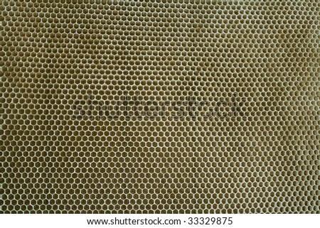 Natural honey texture without honey - stock photo