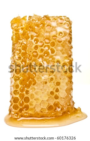 Natural Honeycomb from low perspective isolated on white. - stock photo