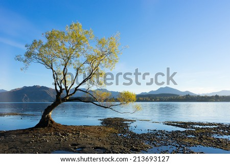 Natural landscape of New Zealand alps and lake - stock photo