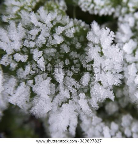 Natural pattern texture of frozen snow on winter ground - stock photo