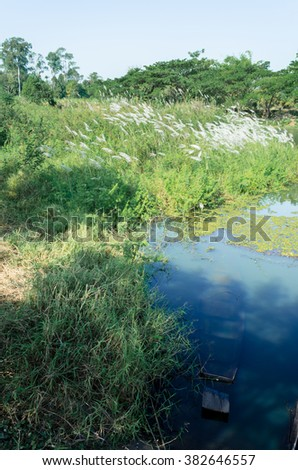 Natural river boat - stock photo