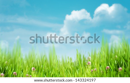 Natural rural backgrounds with copy space - stock photo