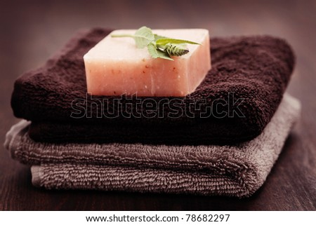 natural sage soap with fresh sage - beauty treatment - stock photo