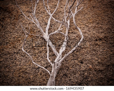 Natural sculpture of wood and stone - stock photo