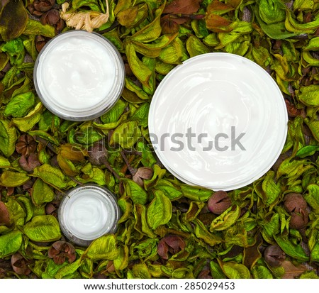 Natural skin care products surrounded by dry yellowish green leaves. Close-up of three open jars filled with cream. Organic cosmetics for women. Top view - stock photo