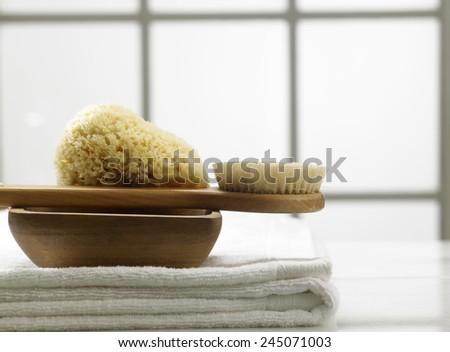 natural sponge in the bath room - stock photo