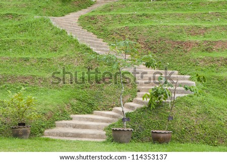Natural stone stairs landscaping in home garden - stock photo