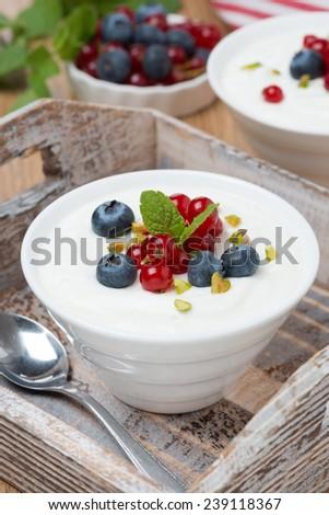 natural yogurt with fresh berries in white bowl, vertical - stock photo